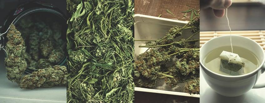 Types of Marijuana Tea