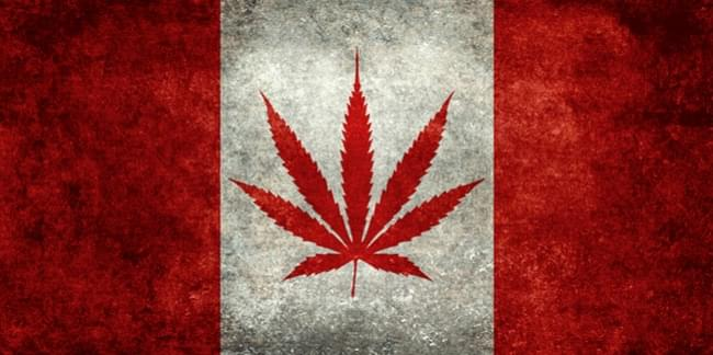 Canada Legislation Recreational Medical Marijuana