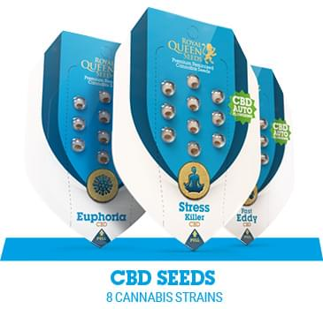 cbd-cannabis-seeds