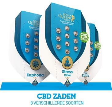cbd-cannabis-zaden