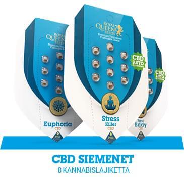 cbd-kannabiksen-siemenet