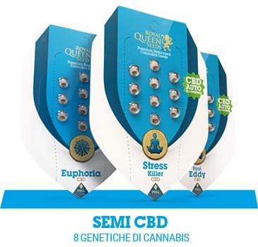 cbd-semi-cannabis