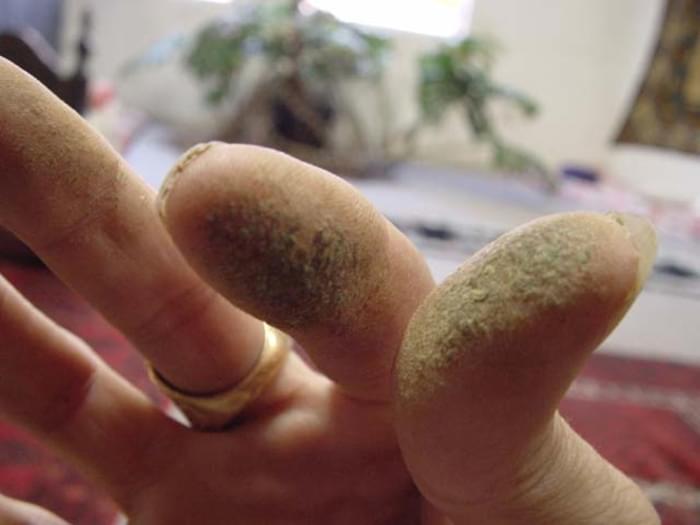 Charas - Haxixe produzido com as mãos.