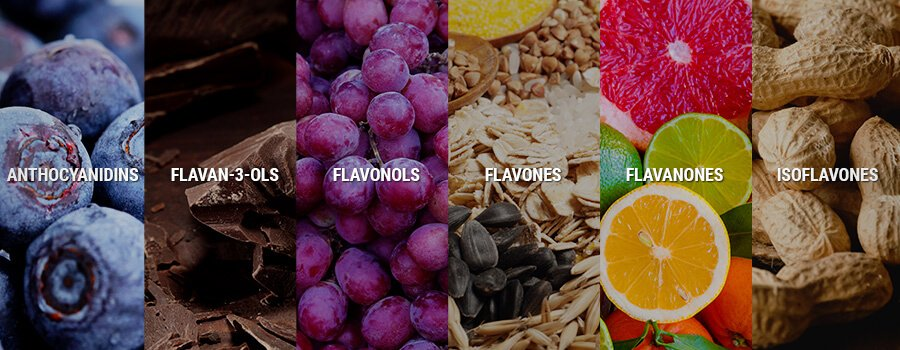 Anthocyanidins, Flavan 3 Ols, Flavonols, Flavones, Flavanones, Isoflavones