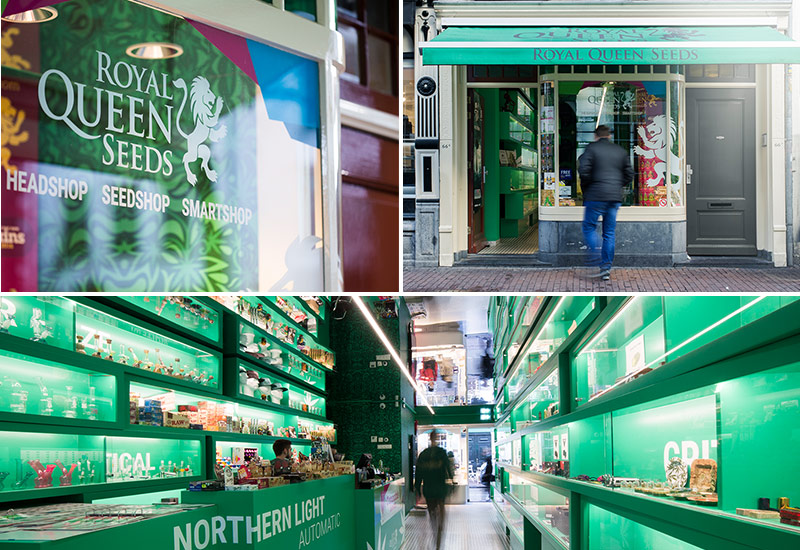 Our cannabis store in the centre of Amsterdam