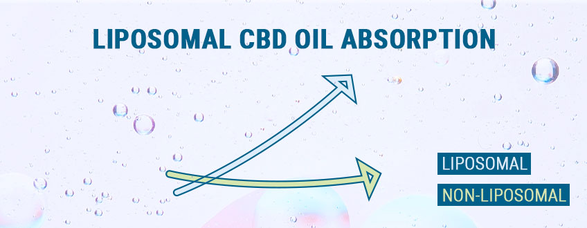 A Note On Liposomal Oils
