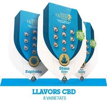 llavors-cbd-cannabis