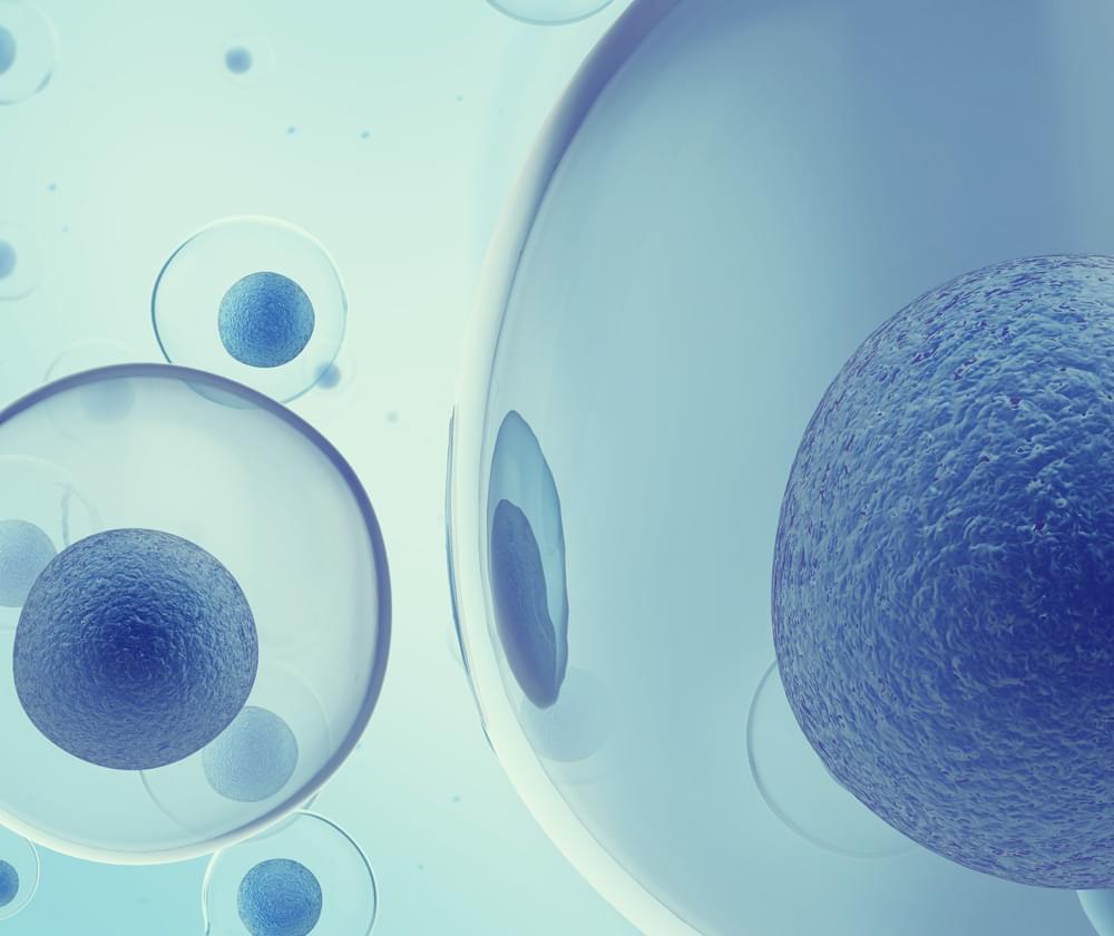 MRSA cannabis antibiotic resistance bacteria infection