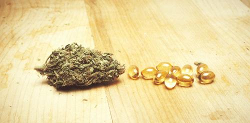Pharma profits therapetuic cannabis medical patients