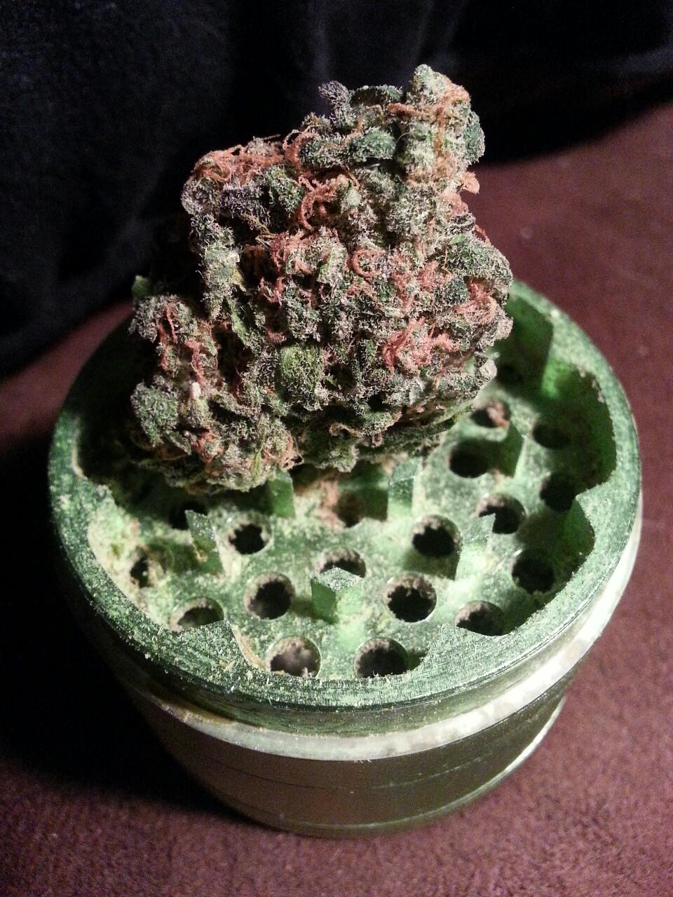 bud cannabis fruity top