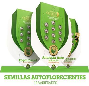 semillas-cannabis-autoflorecientes