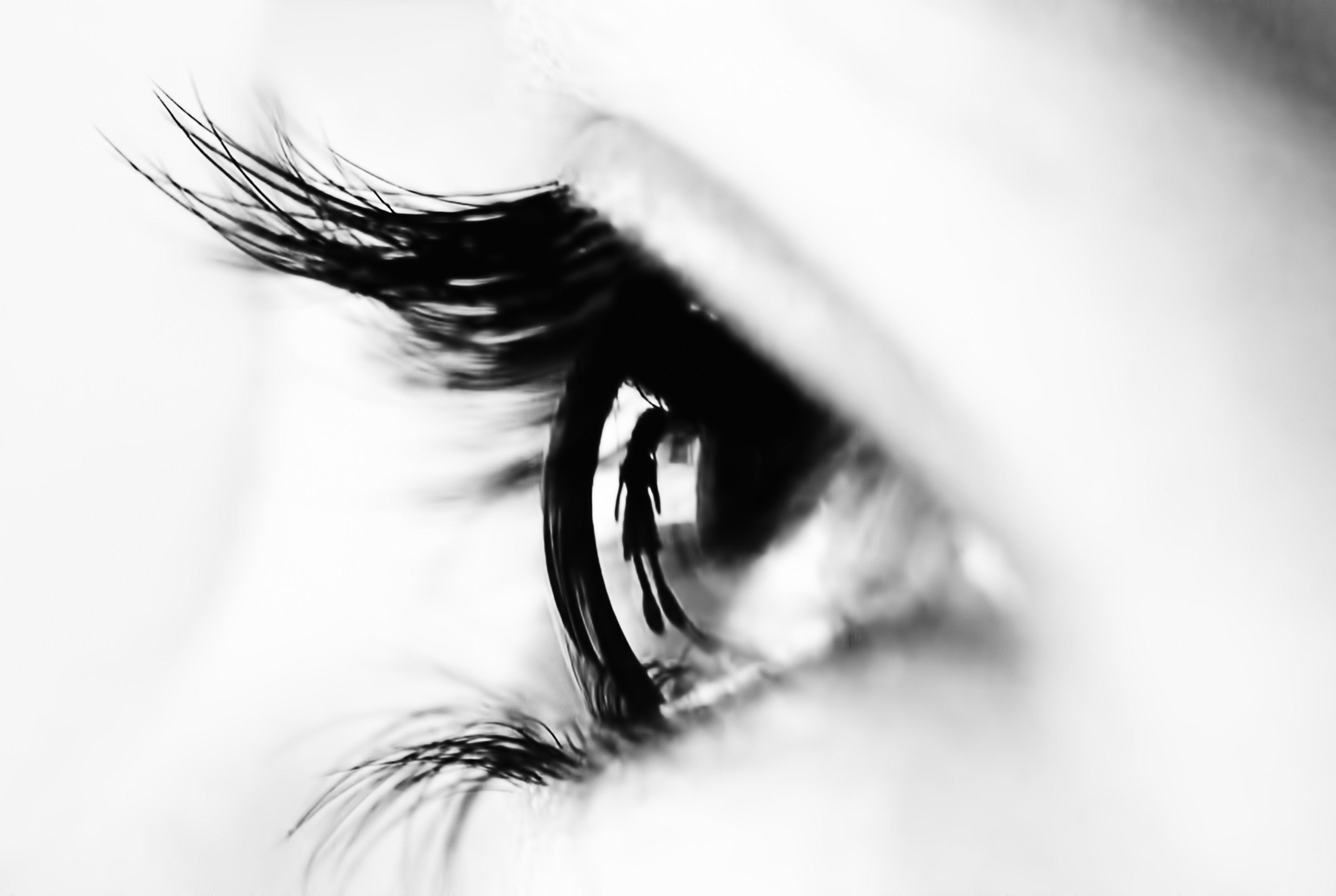cannabis neuroprotector endocannabinoid system vision