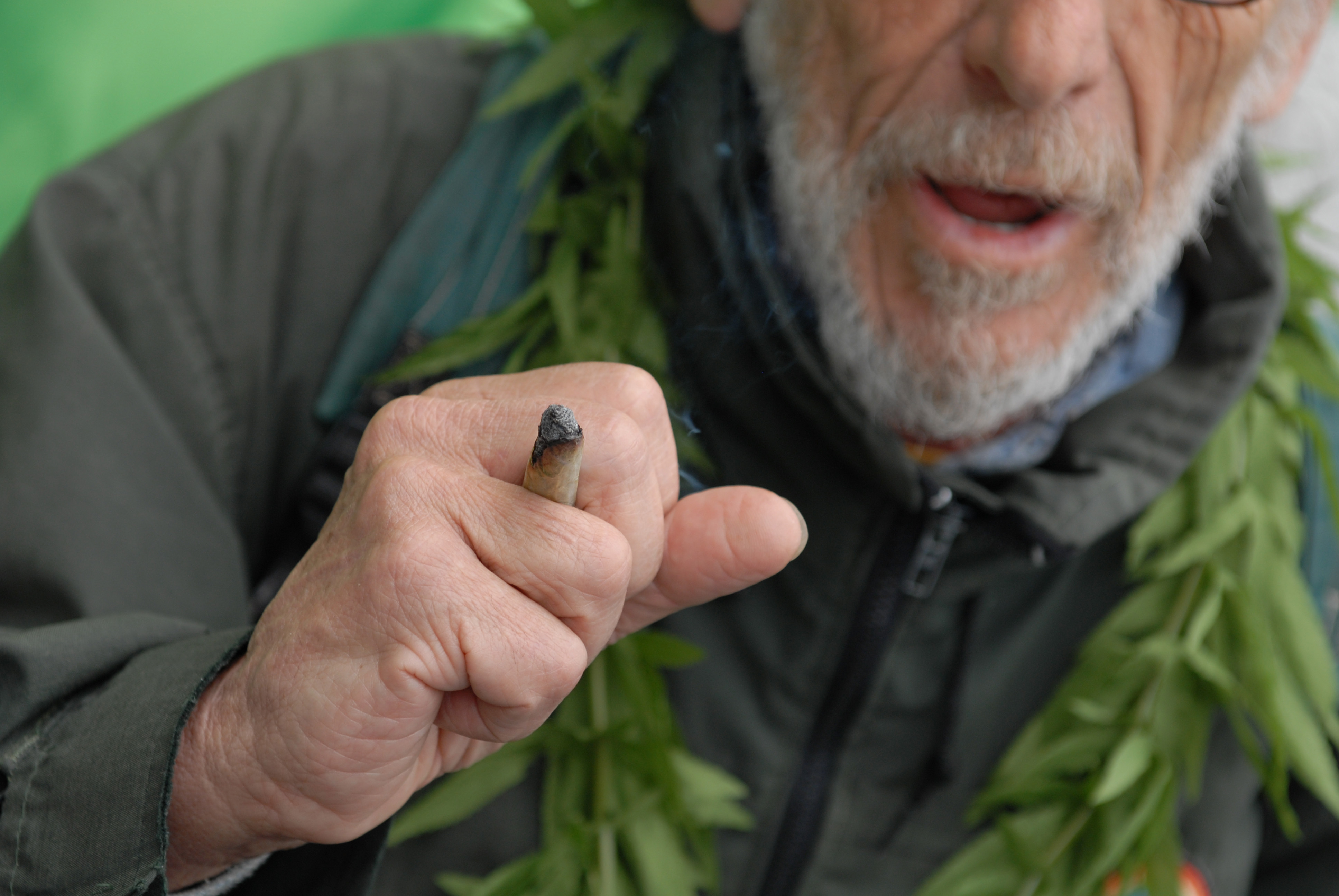 bilbao spanish despenalization cannabis club