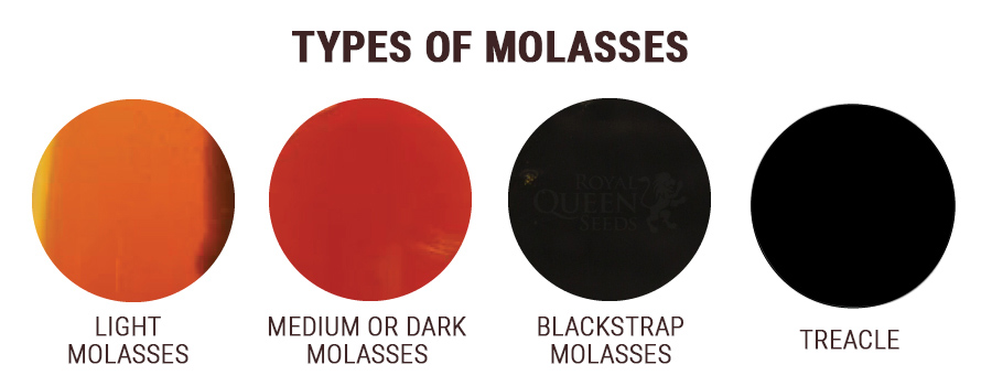 Sulphured and Unsulphured Molasses