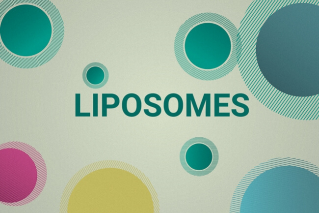 How Liposomes Deliver CBD More Effectively