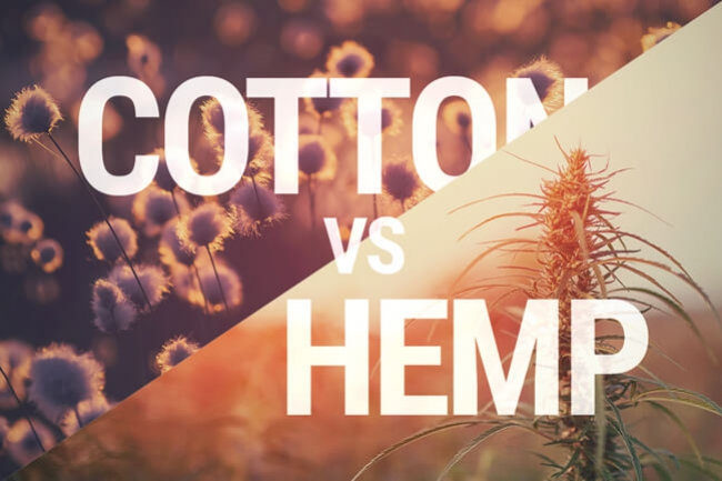 Hemp And Cotton: Which Is The Better Textile?