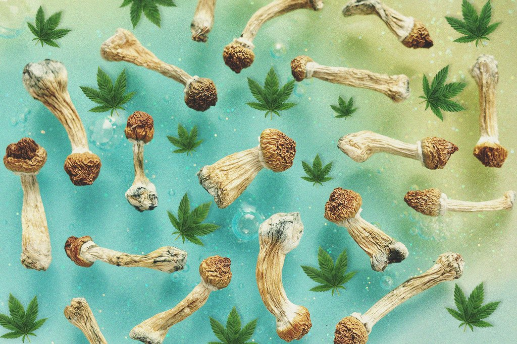 Can You Mix Cannabis And Magic Mushrooms? - RQS Blog
