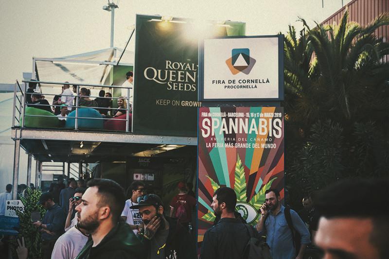 Best Seed Banks 2020 Spannabis 2019: Royal Queen Seeds wins Best Seedbank!   RQS Blog