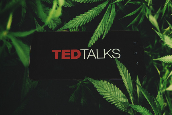 Cannabis Ted Talks — The Best Ted Talks About Weed