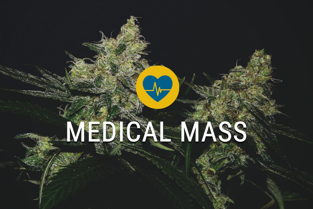 Medical Mass Medical Cannabis Seeds