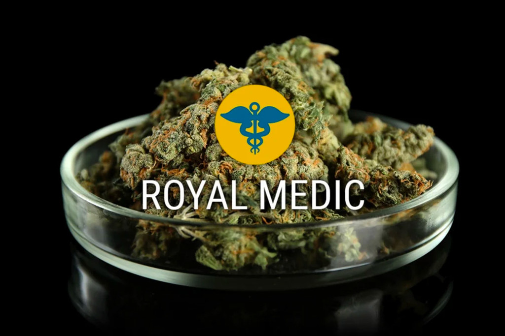 Royal Medic CBD Cannabis Seeds