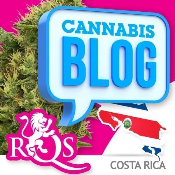Cannabis in Costa Rica