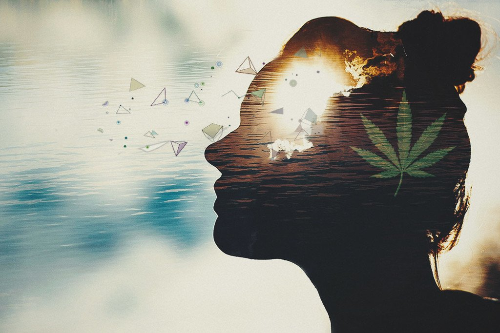 Cannabis Science: Does Smoking Weed Cause Low IQs?