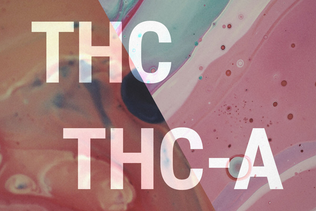 THCA and THC: What's the Difference?