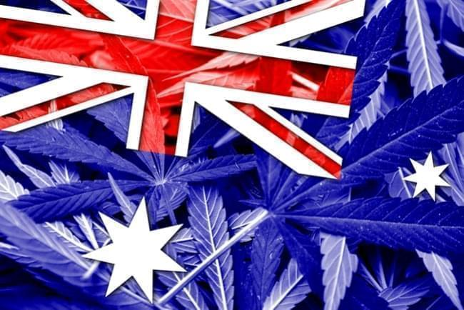 Australia Legalized the Cultivation of Medical Marijuana