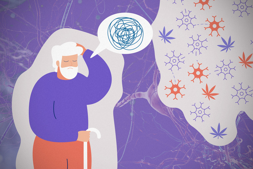 Could Cannabis Hold The Answer To Alzheimer's Disease?