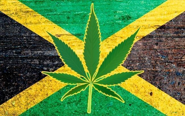 Jamaican Cannabis Decriminilsation Paves The Way For Booming Pot Tourism Industry