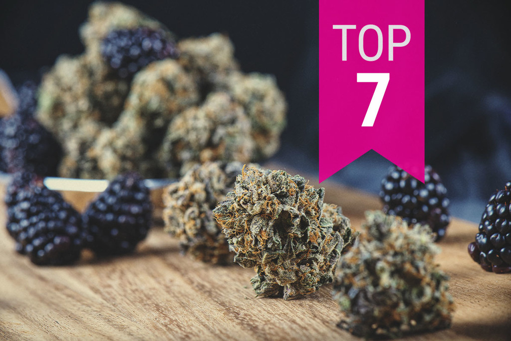 Top Fruity Marijuana Strains