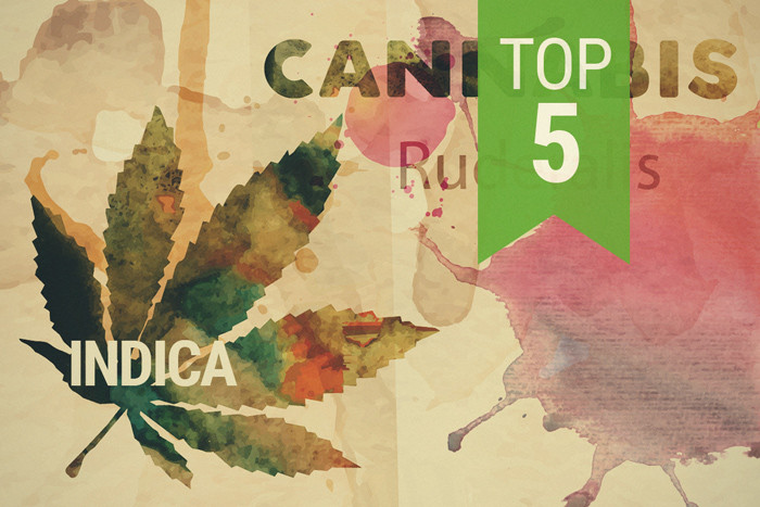 Top 3 Ruderalis Indica Strains