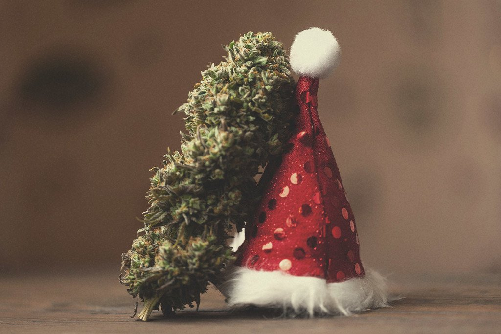 Top Christmas Cannabis Strains