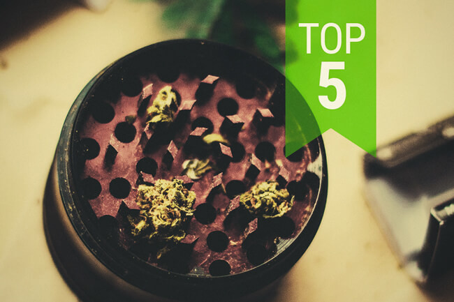 Top 5 Low THC Strains