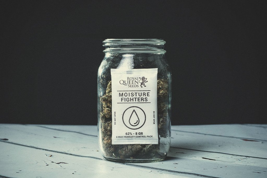 Avoid Mould While Curing Your Weed - RQS Blog