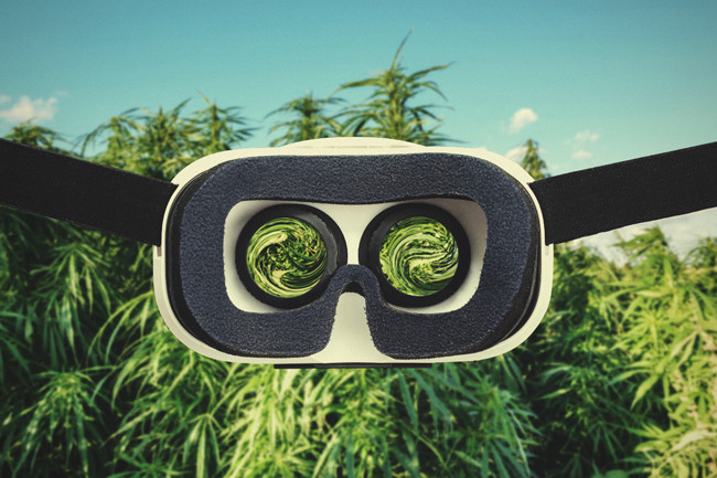 Helpful Gadgets To Grow Cannabis