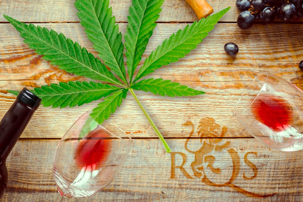 Pairing Cannabis And Wine