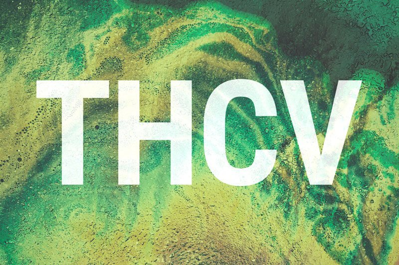 THCV, An Up And Coming Member Of The Cannabinoid Family