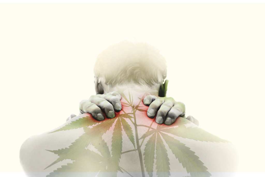 How Cannabis And Massage Combine To Create Powerful Pain Relief