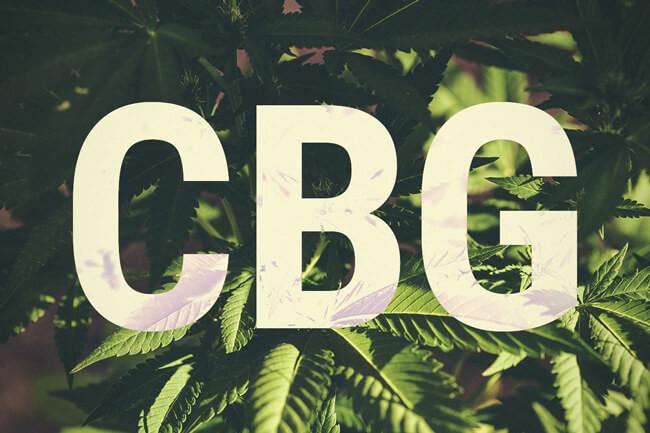 What Does Cannabigerol (CBG) Cannabinoid Do? | Green