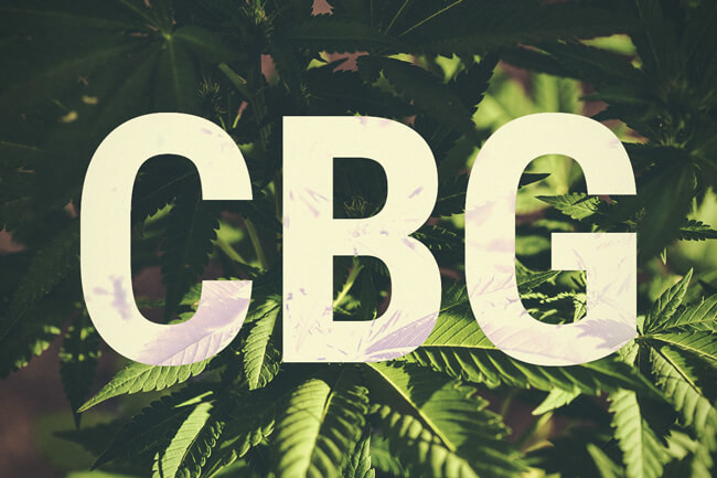 CBG: A Cannabinoid Showing Massive Medical Potential