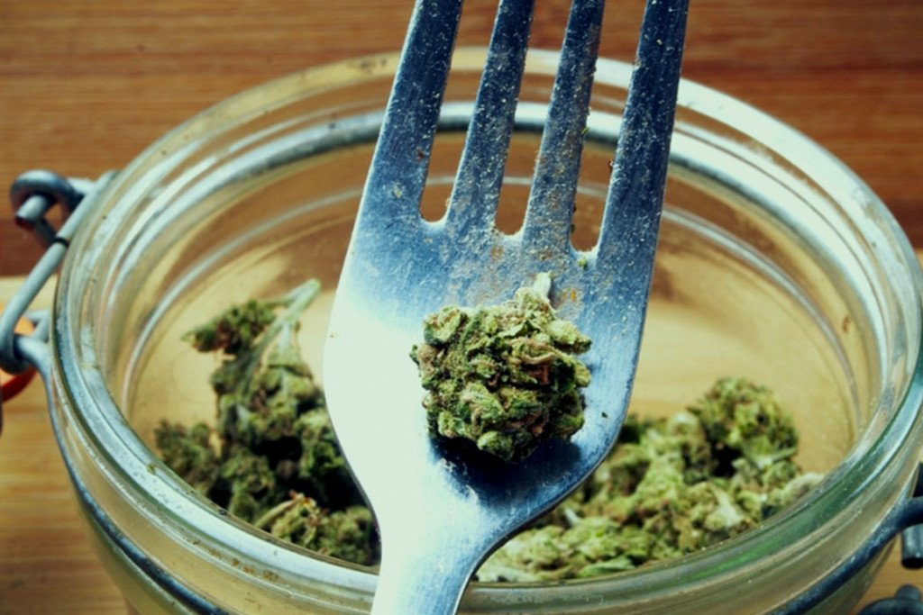 The Therapeutic And Dietary Benefits of Eating Raw Cannabis