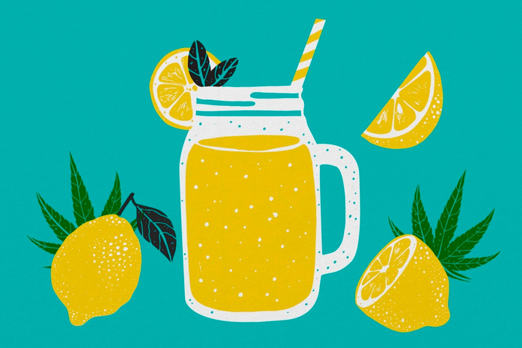 Cannabis Lemonade - A Great Treat For The Summer