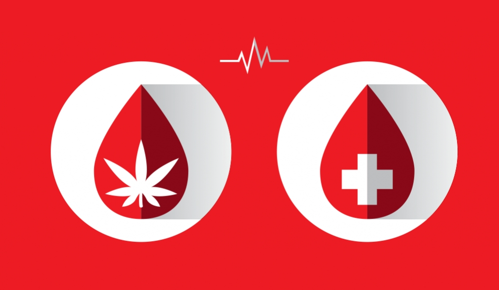 Donating Blood As A Cannabis User