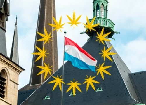 Luxembourg To Allow Medical Cannabis