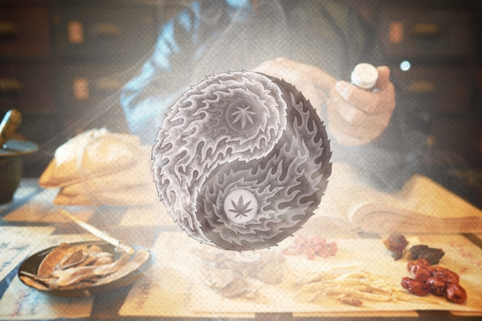 The Use Of Cannabis In Traditional Chinese Medicine