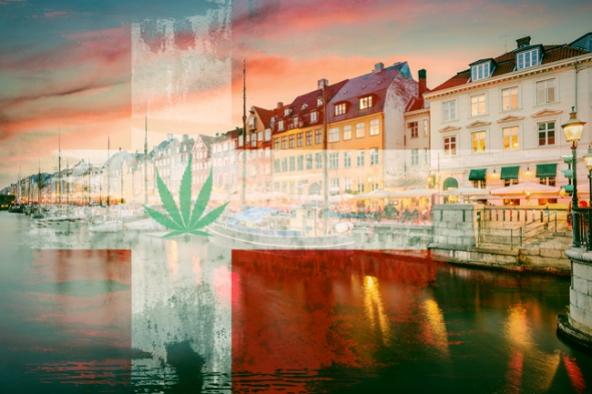 Medical Cannabis Trial Program Approved In Denmark