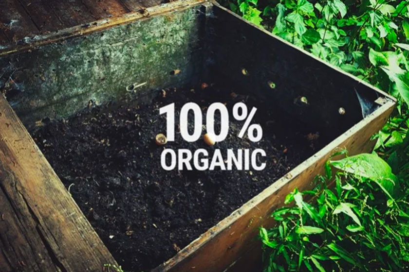 How And Why To Create Homemade Organic Fertilizers