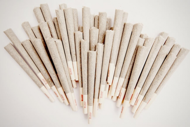 Joints, Blunts, And Spliffs: What Is The Difference?